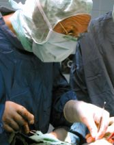 Prof. - Eduard W. Becht - Krankenhaus Nordwest GmbH - Operation