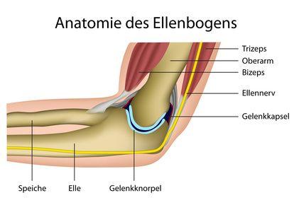 Schmerzen bei jedem Handgriff am Ellenbogen - Hilfe beim Tennisarm, Golferellenbogen und Mausarm