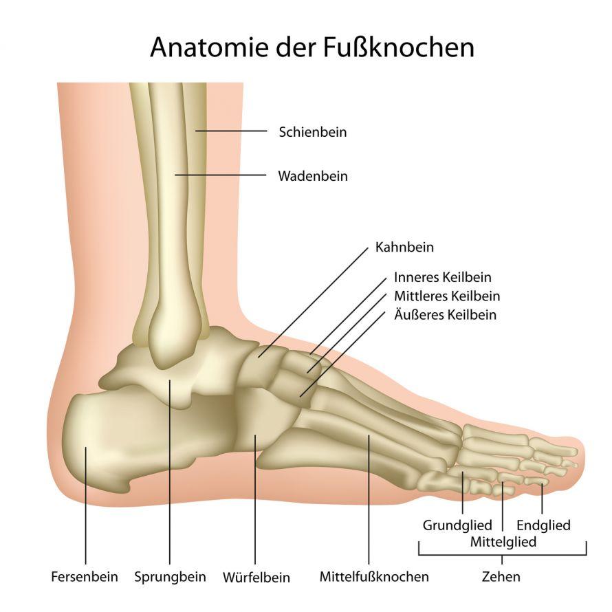 Gebrochener Fuß - Ursachen, Symptome & Therapie