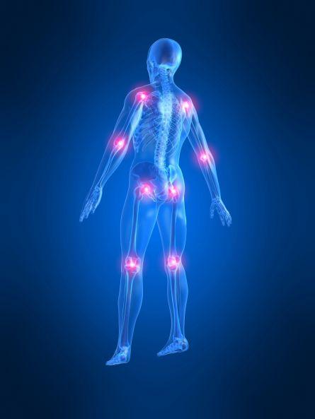 Erkrankungen des Stütz- und Bewegungsapparates