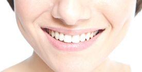 Die Zähne und das Gebiss des Menschen